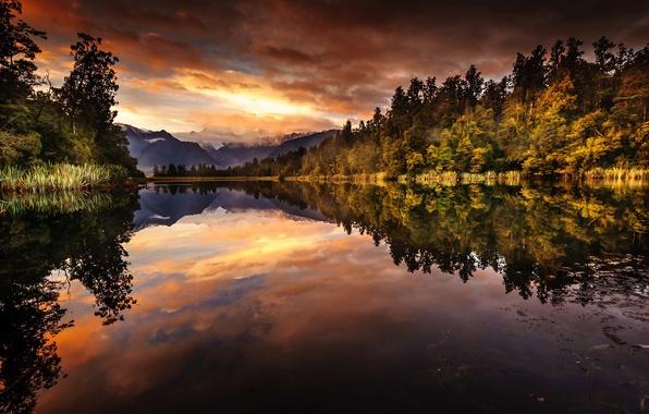 Картинка лес, отражения, горы, озеро, утро, Новая Зеландия, Южный остров, Национальный парк Вестленд, Ледник Фокса, Lake …