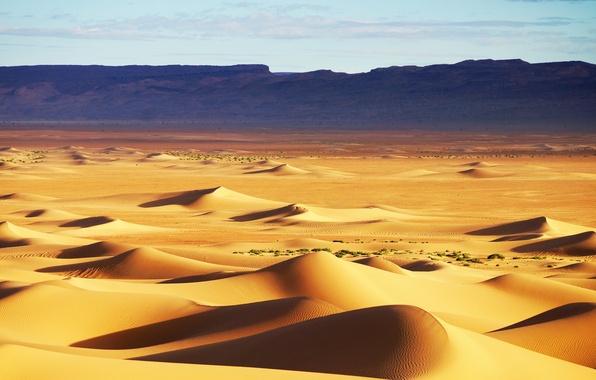 Картинка песок, небо, барханы, холмы, пустыня, текстура, дюны