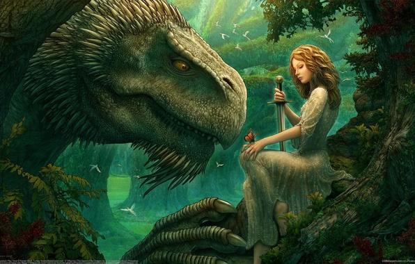 Картинка девушка, деревья, птицы, волшебство, магия, бабочка, поляна, дракон, эльф, сказка, меч, фэнтези, Kerem Beyit, girl, …
