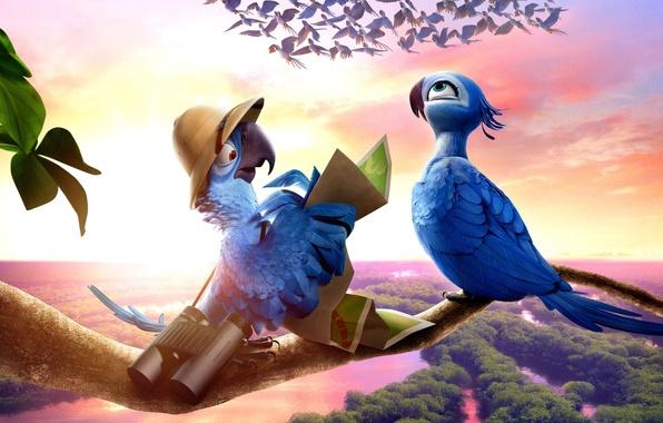 Картинка птицы, графика, мультфильм, попугай, панорама, бинокль, анимационный, РИО 2