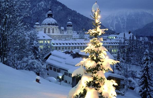 Картинка снег, город, елка, подсветка