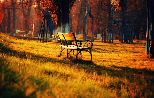 Картинка осень, трава, листья, свет, деревья, пейзаж, скамейка, природа, парк, light, grass, trees, landscape, nature, park, …