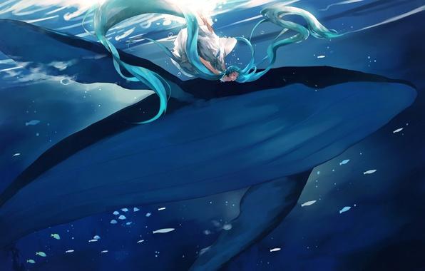 Картинка девушка, аниме, арт, кит, vocaloid, hatsune miku, под водой, yong kit lam