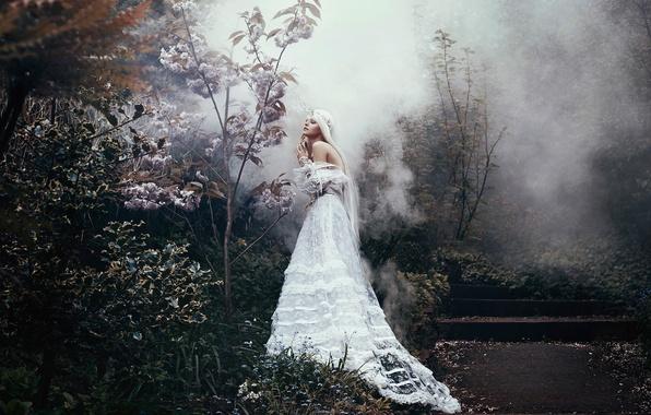 Картинка девушка, фантазия, платье, арт, Bella Kotak