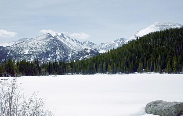 Фото обои Лес, Снег, Горы