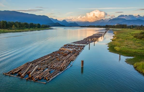 Картинка лес, небо, облака, деревья, горы, река, бревна, Canada, British Columbia, канада, сплав