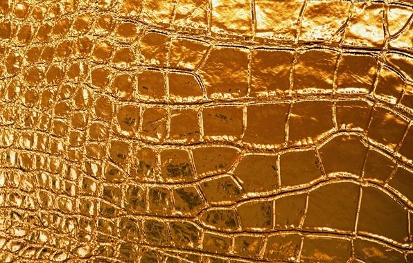Картинка сияние, золото, узор, рисунок, блеск, текстура, кожа, texture, leather, Gold, shine, tracery, radiance
