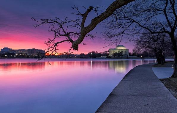 Картинка небо, свет, деревья, закат, lights, парк, река, вечер, освещение, Вашингтон, USA, США, синее, river, sky, …