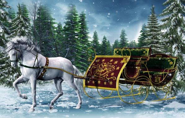 Картинки лошади зимой на рабочий стол 1366х768