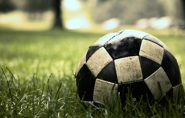 Картинка трава, макро, газон, футбол, игра, мяч, sport, game, матч, soccer