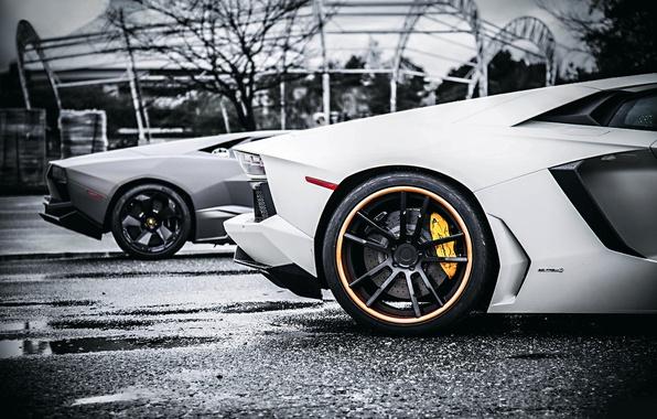 Картинка Lamborghini, Reventon, Style, White, Tuning, Aventador, Body VS
