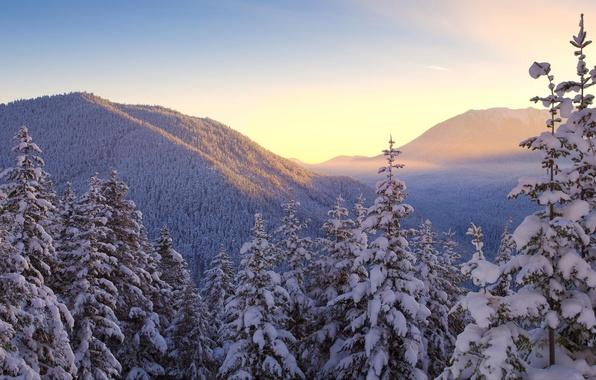 Картинка зима, небо, снег, деревья, горы, природа, пейзажи