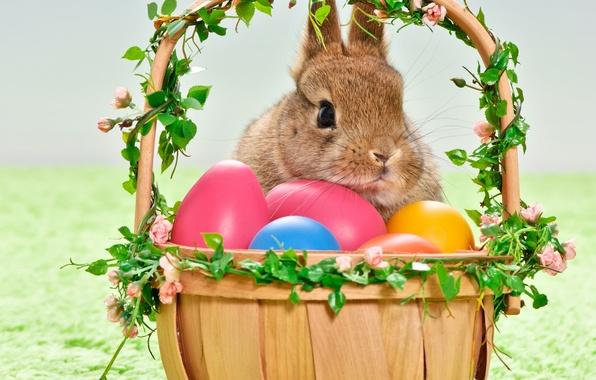 Картинка праздник, корзина, яйца, кролик, пасха