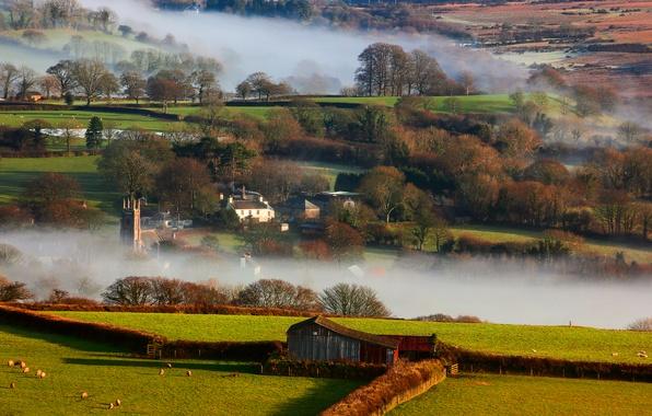 Картинка зима, природа, туман, утро, Британия