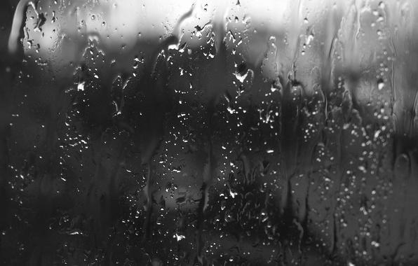 Фото обои стекло, капли, дождь