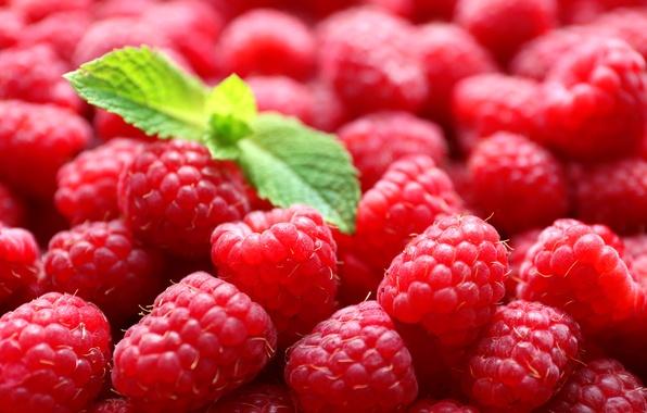 Картинка ягоды, малина, мята, листики