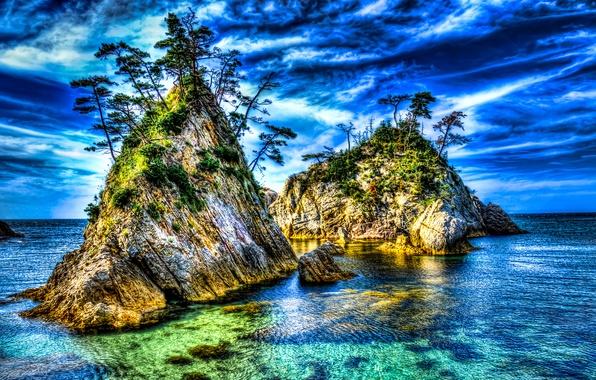 Фото обои море, деревья, скалы, hdr, природа