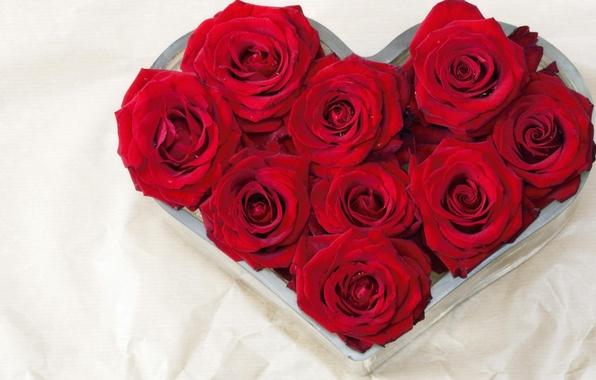 Картинка цветок, любовь, цветы, природа, подарок, сердце, розы, букет, красные, сердечко, признание