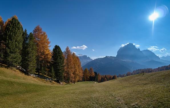 Картинка осень, лес, небо, солнце, деревья, горы, склон, Альпы, Италия, Южный Тироль, Доломиты, Сассолунго