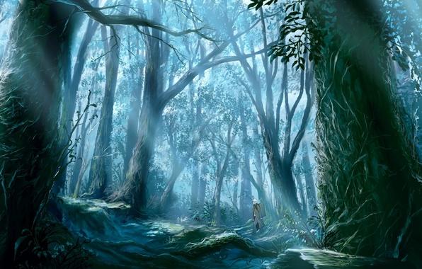 Картинка лес, лучи, деревья, корни, человек, старый, путник, солнца, Mushishi