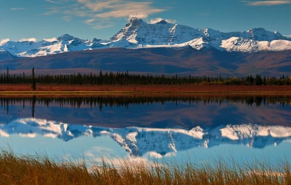 Картинка лес, небо, горы, отражение, река, долина