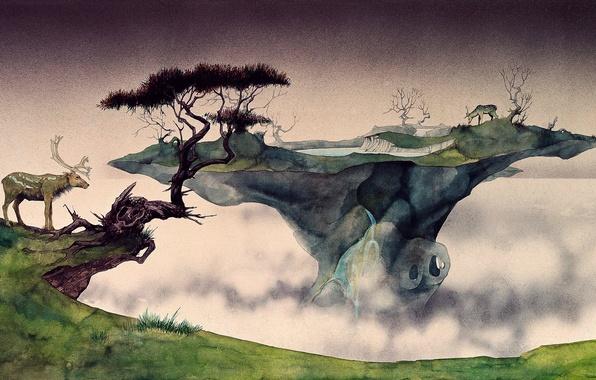 Картинка природа, туман, остров, олени