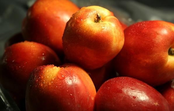 Картинка вода, капли, макро, яблоки, еда, красные, фрукты, вкусно, полезно