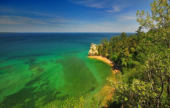 Картинка море, деревья, природа, скала, берег