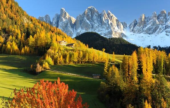 Картинка Природа, Горы, Осень, Лес, Альпы, Луг, Италия, Пейзаж, Dolomites, Val Gardena