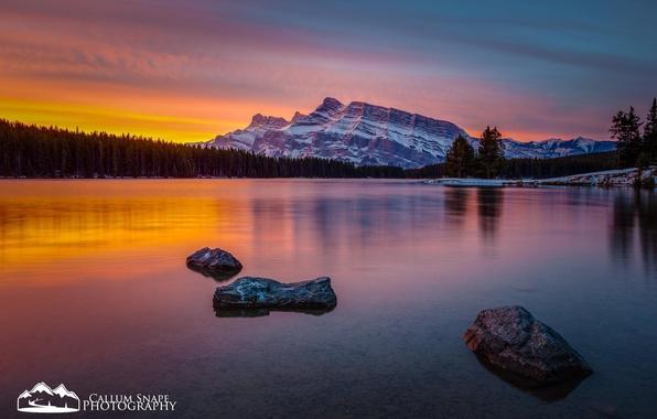 Картинка лес, снег, закат, горы, природа, озеро, British Columbia, alberta, Assiniboine Provincial Park, Lake Magog