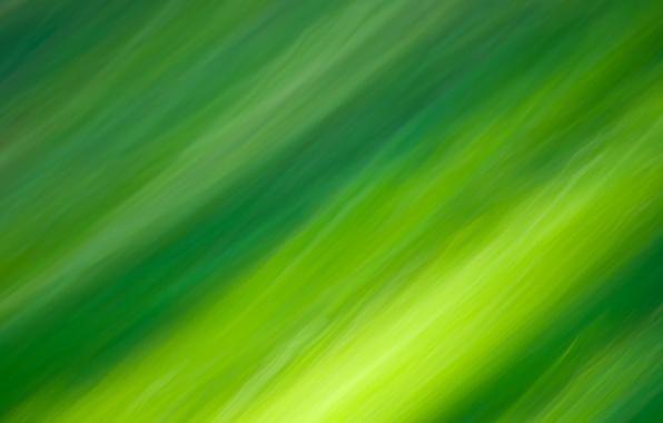 Обои зеленый линии цвета картинки на