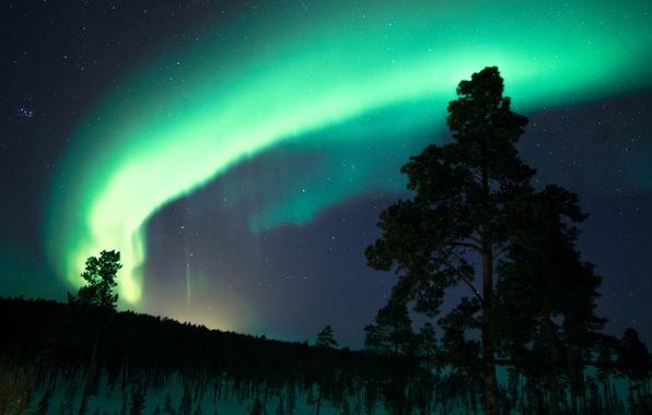 Картинка небо, звезды, снег, деревья, ночь, северное сияние, Финляндия