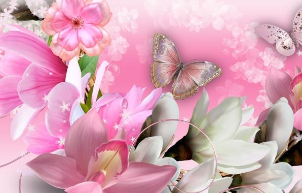 Фото обои бабочка, коллаж, лепестки, орхидеи, цветы