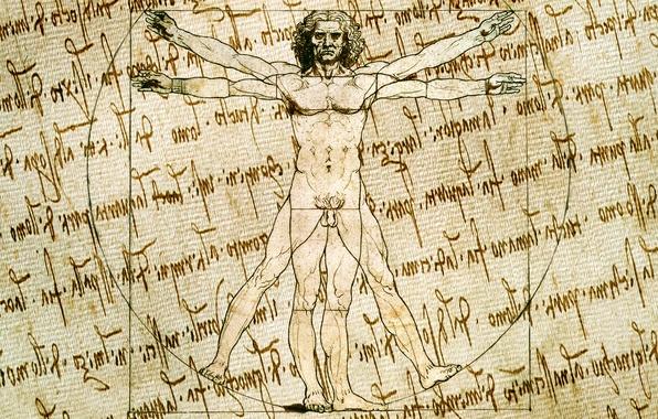 Картинка стиль, фон, рисунок, вектор, символы, набросок, художник, текстуры, холст, рукопись, витрувианский человек, Леонардо да Винчи