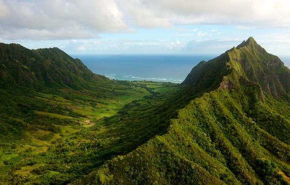 Картинка море, зелень, лес, небо, трава, вода, облака, деревья, пейзаж, горы, природа, океан, высота, grass, forest, …