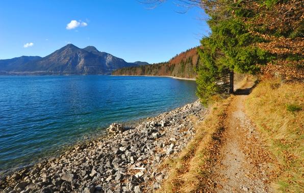 Картинка лес, небо, деревья, горы, озеро, камни, берег, бавария, германия, тропинка