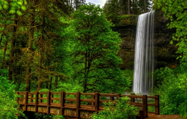 Картинка лес, вода, деревья, пейзаж, мост, природа, парк, вид, водопад, forest, trees, landscape, nature, bridge, water, …