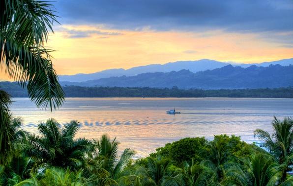 Картинка река, пальмы, берег, вечер, Guatemala, Livingston