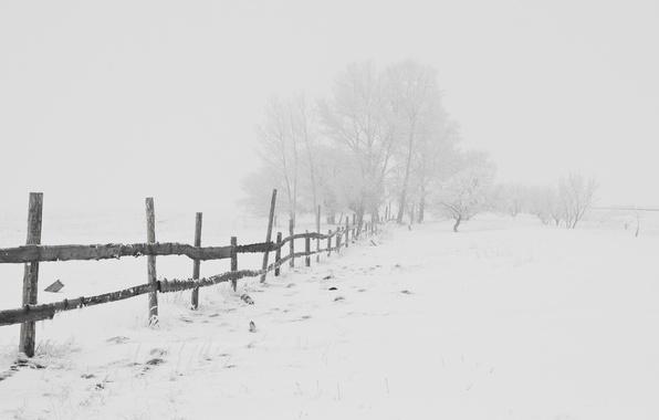 Картинка зима, дорога, снег, мороз, Nature, метель, road, blizzard, winter, snow, frost