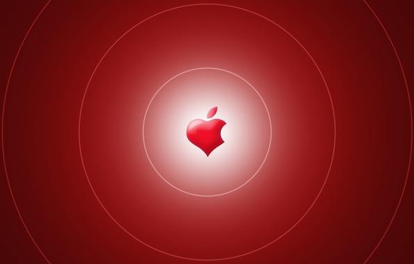 Картинка обои, сердце, apple, яблоко, logo, бренд