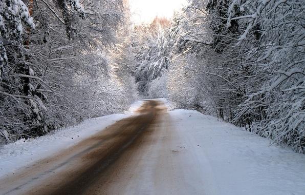 Картинка зима, дорога, лес, снег, деревья, природа, дороги, фотографии