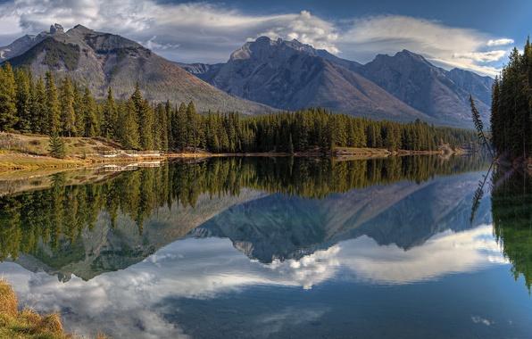Картинка лес, горы, озеро, отражение, Канада, Альберта, Banff National Park, Alberta, Canada, Банф, Johnson Lake, Национальный …