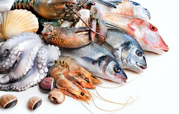 Картинка рыба, осьминог, омар, креветки, морепродукты