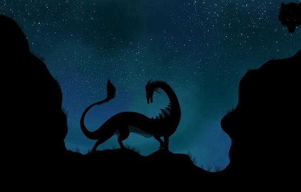 Картинка звезды, ночь, дракон, силуэт, хвост