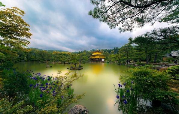 Картинка деревья, цветы, озеро, парк, Япония, храм, Japan, Kyoto, Киото, Temple, Golden Pavilion, Золотой павильон