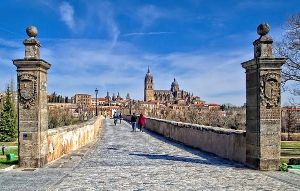 Картинка дома, собор, Испания, римский мост, Саламанка
