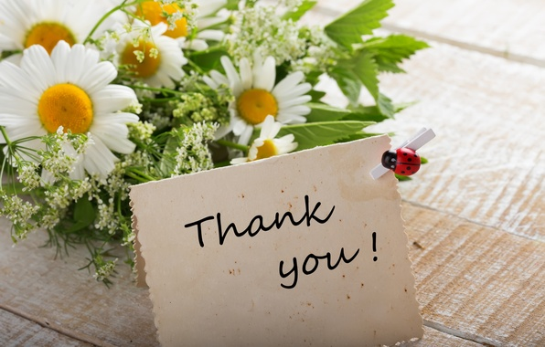 Картинка ромашки, букет, flowers, thank you