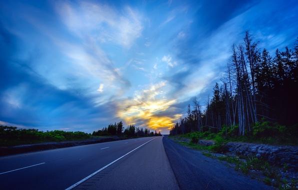 Картинка дорога, небо, вечер