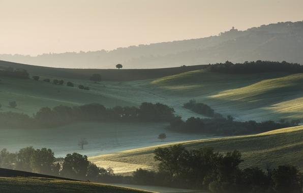 Картинка деревья, туман, холмы, поля, утро, Италия