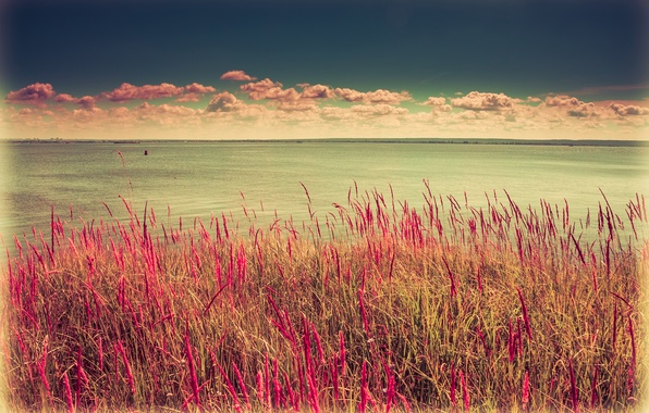 Картинка Солнце, Вода, Песок, Природа, Пляж, Трава, Камни, Ветер, День, Утес, Россия, Казань, Гладь
